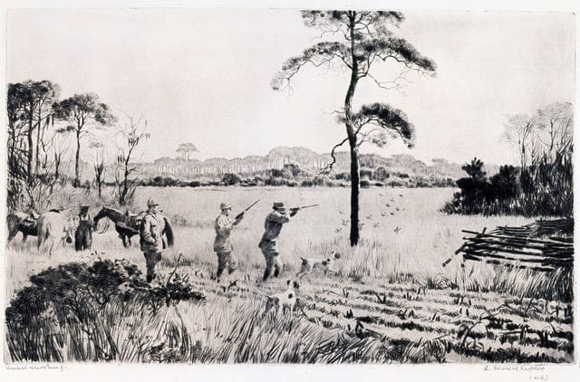 Image credit: Aiden Lassell Ripley, Quail Shooting, undted. Drypoint etching on paper. Morris Museum of Art, Augusta, Georgia. Gift of the Robert Powell Coggins Art Trust.